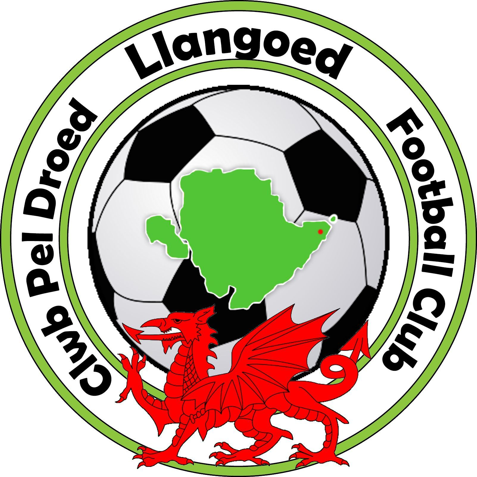 llangoed badge for tops